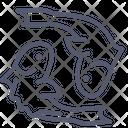 Peace Fish Fish Sea Icon