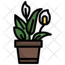 Peace Lily Flower Plant Icon