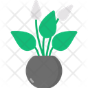 Peace Lily Icon