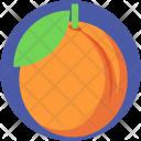 Peach Apricot Fruit Icon