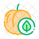 Peach Fruit Leaf Icon
