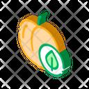 Peach Fruit Leaf Icon