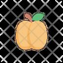 Peach Fruit Food Icon