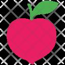 Peach Plant Tree Icon