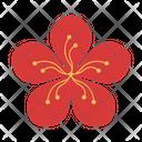 Blossom Peach Flower Icon