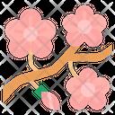 Peachblossom Season Blooming Icon