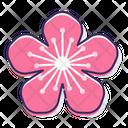 Mpeach Flower Peach Flower Flower Icon