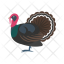 Peacock Bird Indian Icon