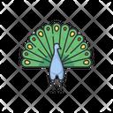 Peacock Peafowl Spread Icon