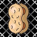 Peanut Dry Fruit Icon