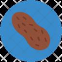 Peanut Nut Ground Icon