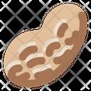 Peanut Farm Natural Icon
