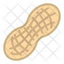 Peanut Nut Food Icon