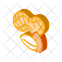 Peanut Nuts Icon