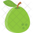 Pear Fruit Green Icon
