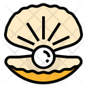 Pearl Gem Shell Icon