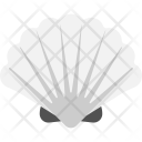 Pearl Box Seashell Icon