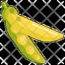 Peas Vegetable Greenfood Icon