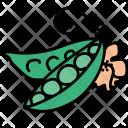 Peas Vegetable Healthy Icon