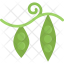 Peas Cooking Food Icon