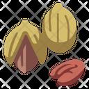 Pecan Icon