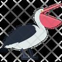 Pelican Bird Nature Icon