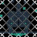 Pelvic One Bones Icon