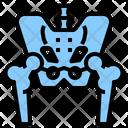 Pelvis Anatomy Hip Icon