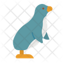 Penguin Animal Wild Icon