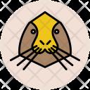 Penguin Jackass Animal Icon