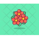Peony Flower Spring Lower Agriculture Icon