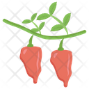 Red Paper Plant Red Chilli Spices Icon