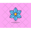 Periwinkle Spring Flower Agriculture Icon