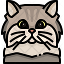 Persian Cat Cat Face Icon