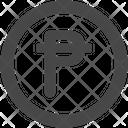 Peseta Icon