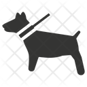 Pets Dogs Animals Icon