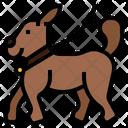 Walking Your Dog Pet Dog Icon