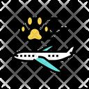 Pet Transportation Airplane Icon