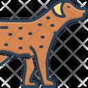 Pet Tame Faithful Icon
