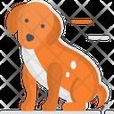 Pet Dog Puppy Icon