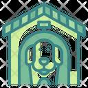 Pet Aniaml Dog Icon