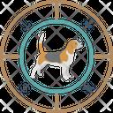 Pet Astrology Icon