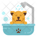 Salon Pet Bath Icon