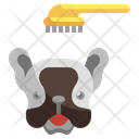 Pet Brush Grooming Beauty Icon