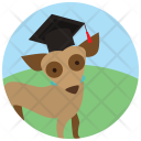 Dog Competition Pet Icon