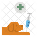 Medical Animal Pet Icon