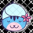 Ipet Spa Pet Spa Spa Icon
