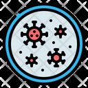 Petri Dish Virus Bacteria Icon