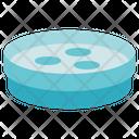 Biology Petri Dish Bacteria Icon