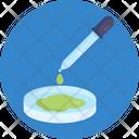 Petri Dish Dropper Laboratory Icon